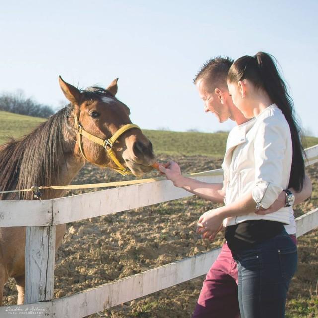 tutuphoto randefotenie pusa fotimevonku fotenie datephoto slovensko brezany kone