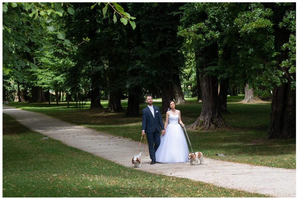 svadba so psom
